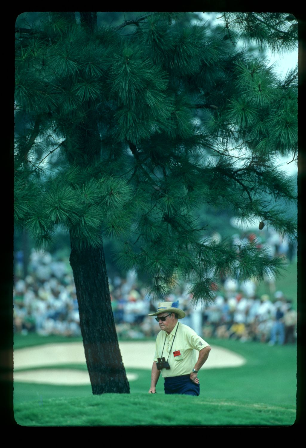 An official under a pine tree during the 1981 Masters