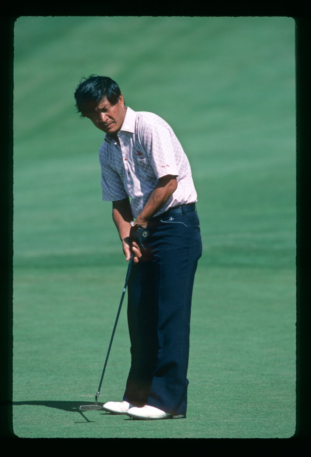 A golfer putting at the 1984 Kapalua International Golf Championship