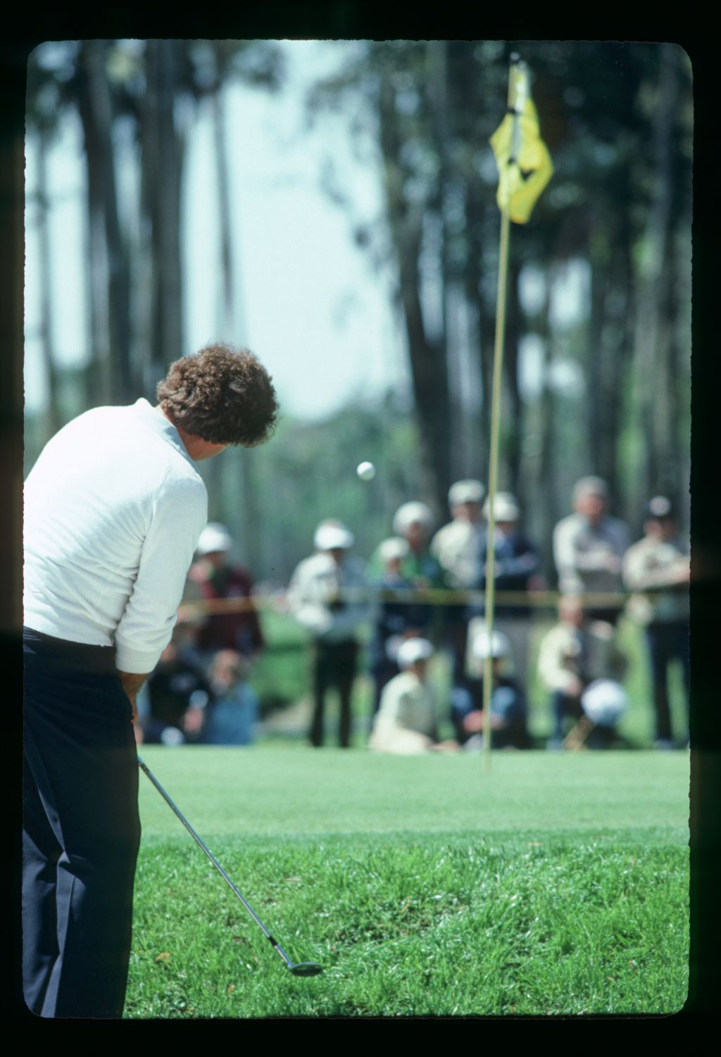 Fuzzy Zoeller lobs his shot from the greenside rough at the 1983 Bay Hill Classic