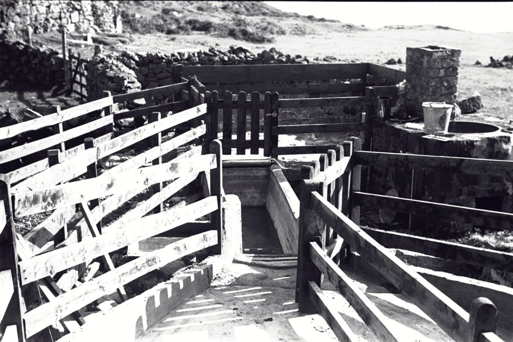 Sheep pens and dipping trough, Burg Farm, Isle of Mull.