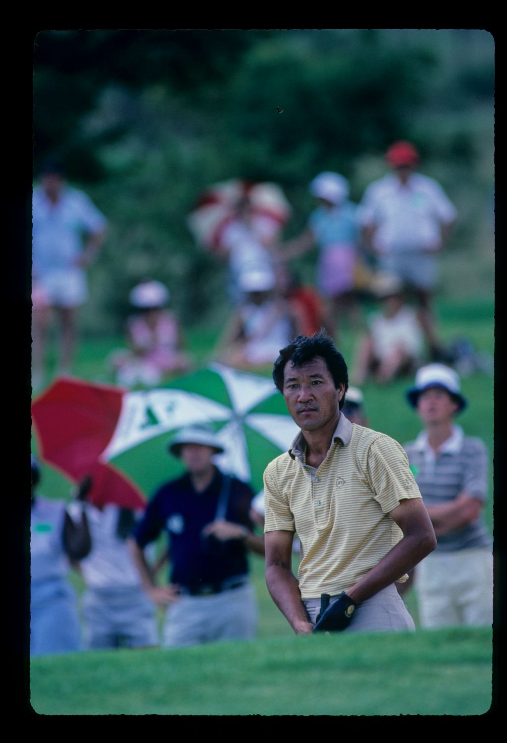 Isao Aoki staring after his chip during the 1984 Sun City Challenge