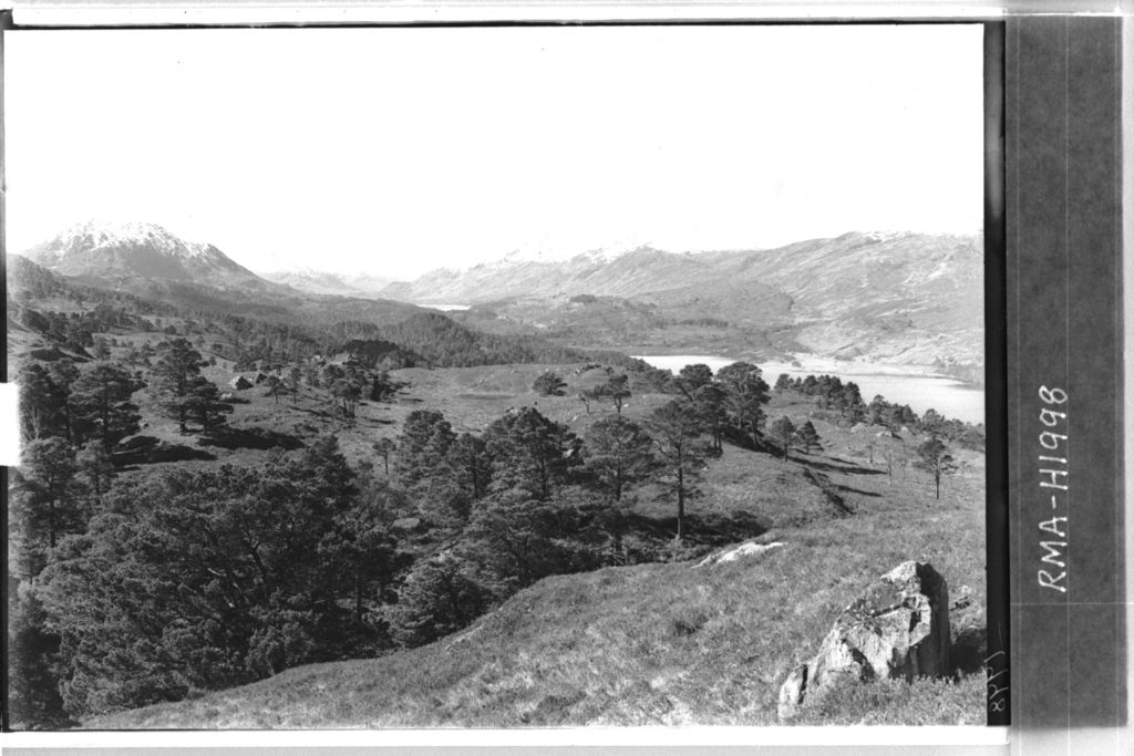 Glen Affric forest and lochs.