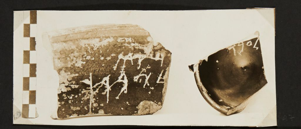 [Pottery fragments with epigraphic inscriptions]