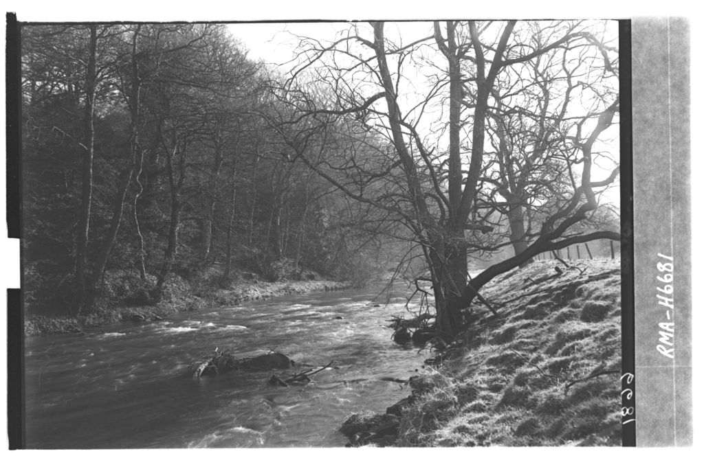 On the River Esk, Newbattle.