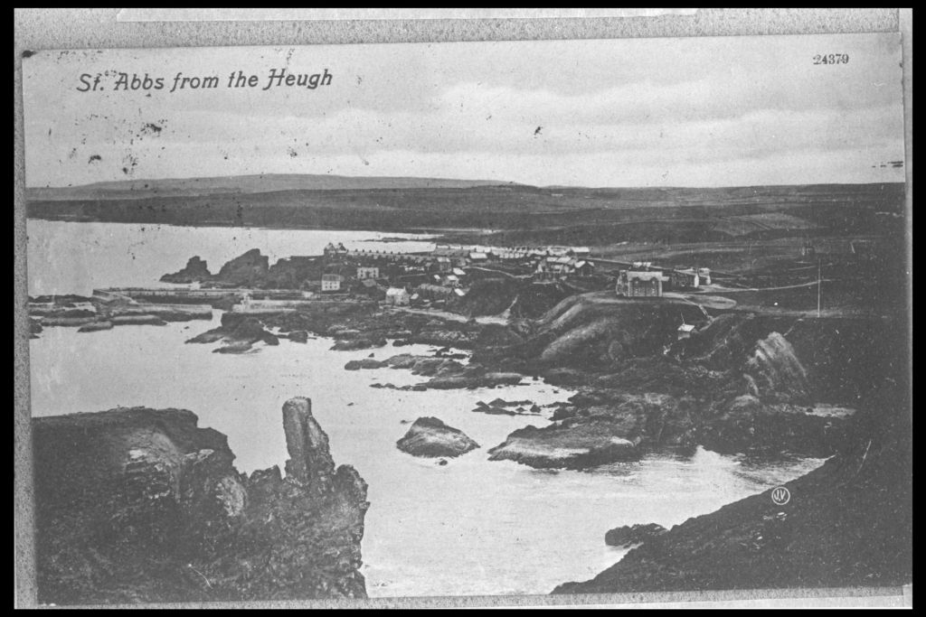 St Abbs from the Heugh.