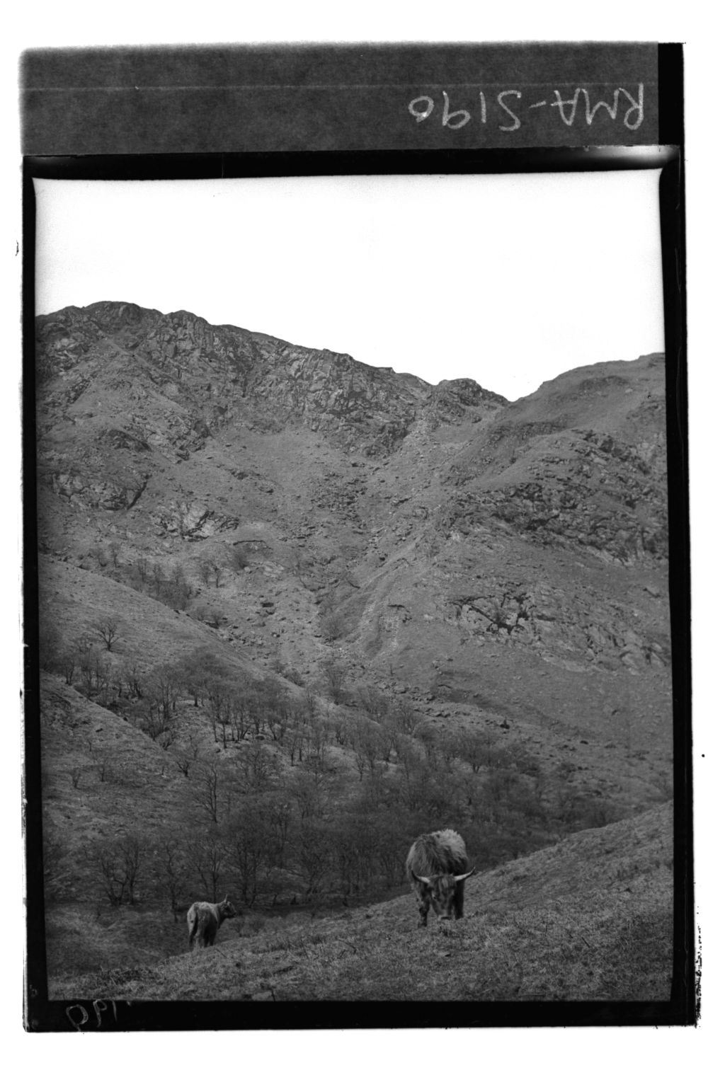 Cliff, South of Loch Lubnaig.