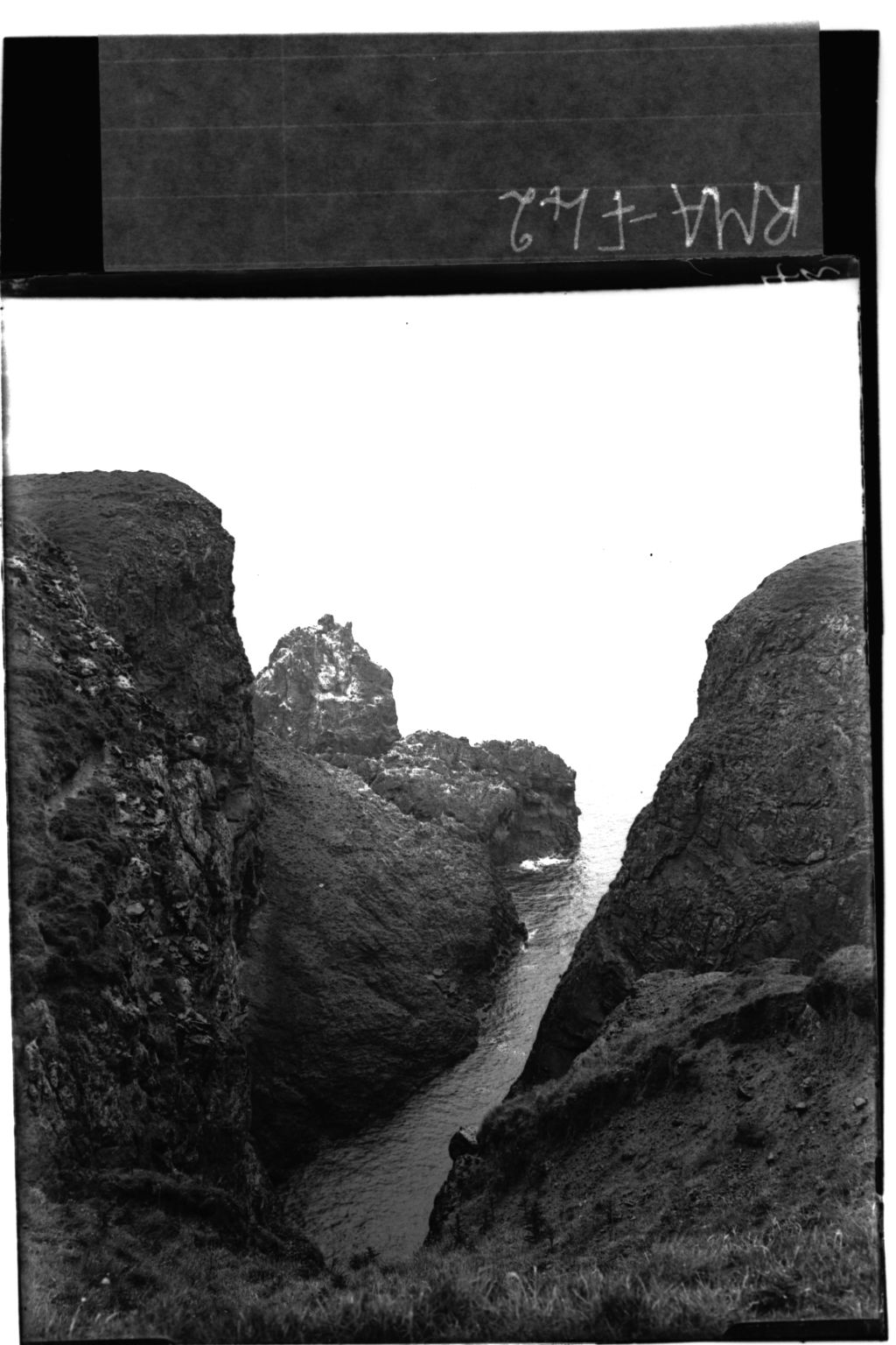 Gorge, St Abbs Head.