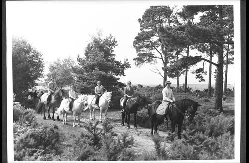 Pony Trekking at Forres.