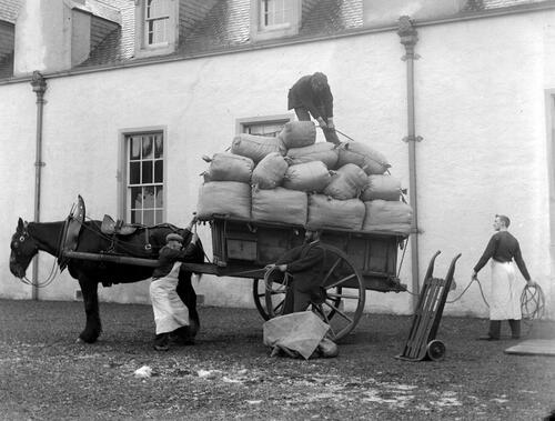 Horse cart being loaded with sacks