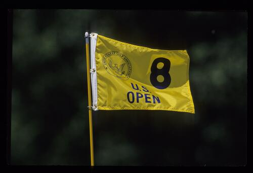 The 1990 United States Open Championship pin flag for the 8th hole