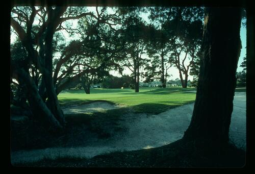 A view of the golf course at Cypress Point