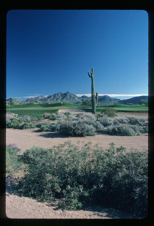 A scenic view across the sands at the Desert Highlands Golf Course