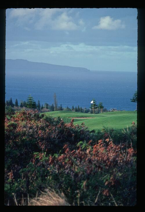 The 8th Hole at Kapalua Village Golf Course