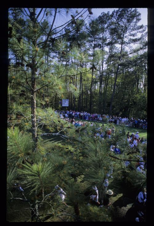 Ray Floyd is just visible on the 16th tee through the pines at the 1993 Masters