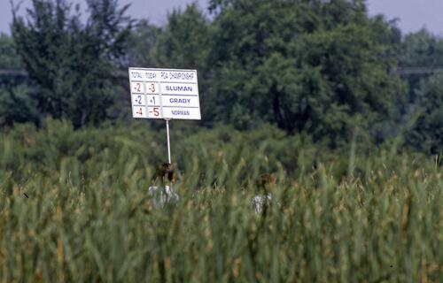The scorebaord holder is barely visible in the reeds during the 1989 USPGA