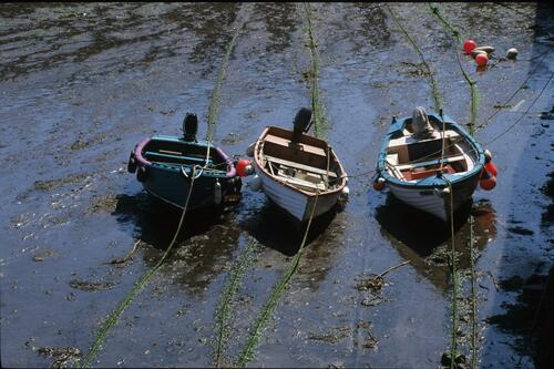 Three boats in the Cellardyke harbour.