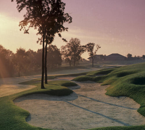 Golf Courses and Venues