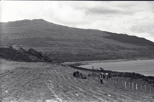 Cutting the grass for hay, Burg Farm, Isle of Mull.
