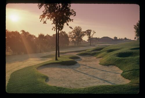Bunker and mounding at the Jack Nicklaus designed Muirfield Village in the early morning mist