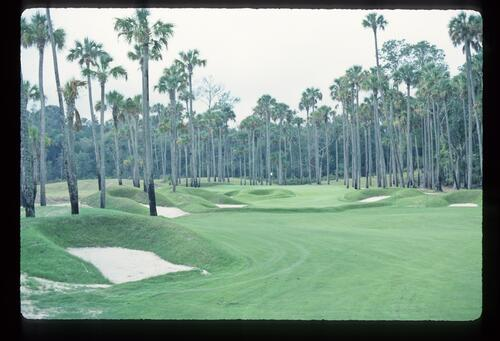 Heavily mounded, bunkered and treed: TPC at Sawgrass