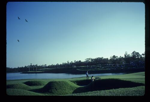 Bizarre mounds and tiered slopes at TPC Sawgrass