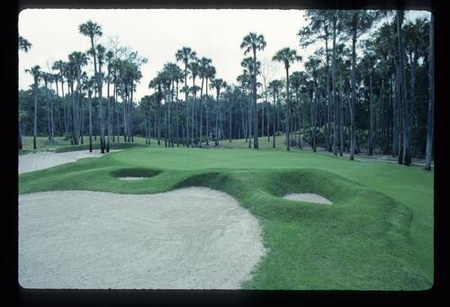 Manicured mounds and bunkers at TPC Sawgrass