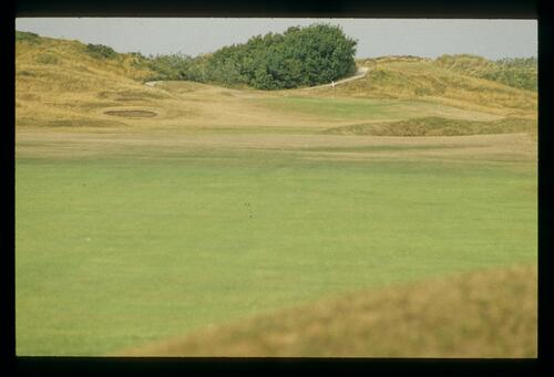 Parched rough and greener fairway welcoming a spring shower at Royal St Georges