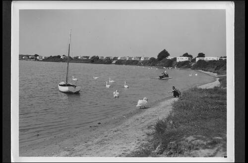 The Lagoon, Pagham.
