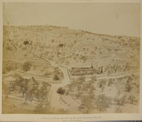 Mount of Olives and the Garden of Gethsemane from the Wall of Jerusalem