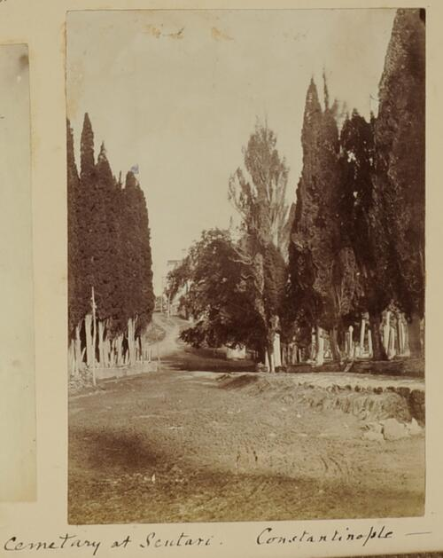 Cemetary at Scutari - Constantinople