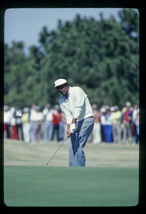 Calvin Peete chipping to the green during the 1981 TPC