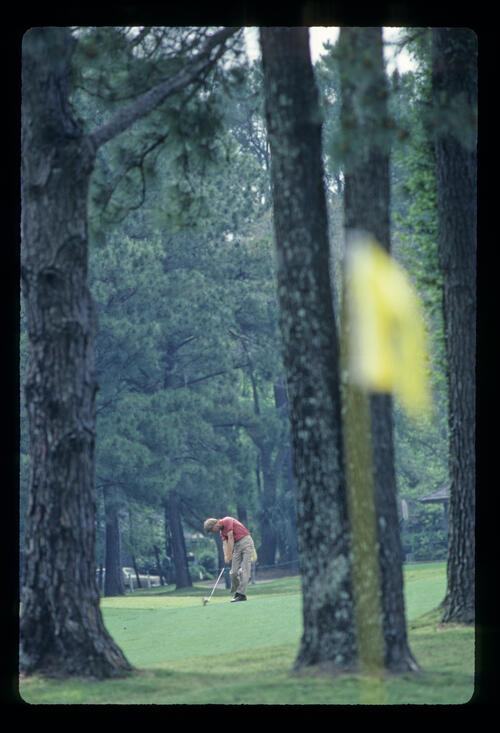 Bill Rogers trying to thread his ball through the trees during the 1983 Masters