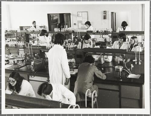 First year laboratory, Department of Chemistry, February 1976