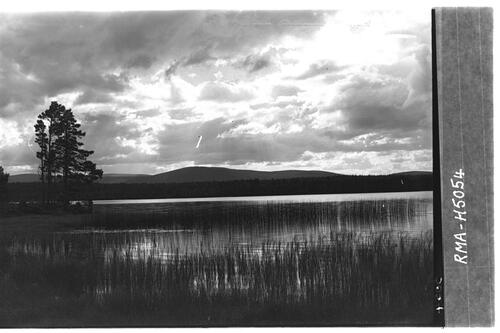 Cloud effect, Loch Garten.