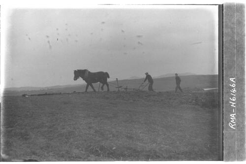 Ploughing at Breasclete.