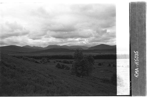 Cairngorms view from Lynemore.