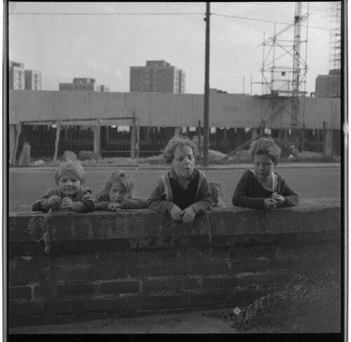 [Four unidentified small children standing on the far side of a short brick wall, Rye Hill]
