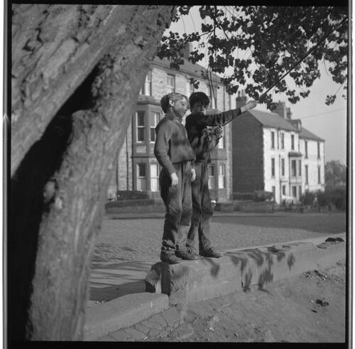 [Two unidentified boys standing on a wall under a tree, Rye Hill]