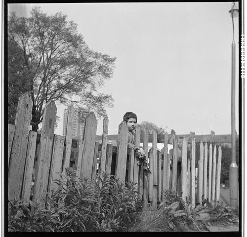 [An unidentified small child standing on the far side of a wooden fence, Rye Hill]