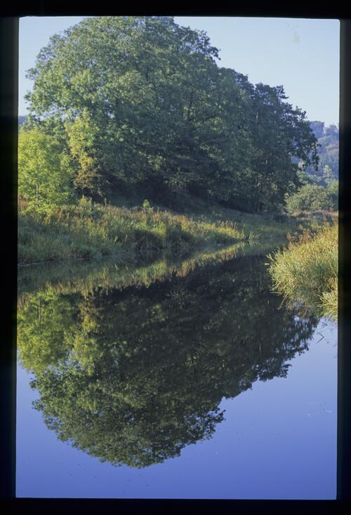 Forth and Clyde Canal near Twechar.