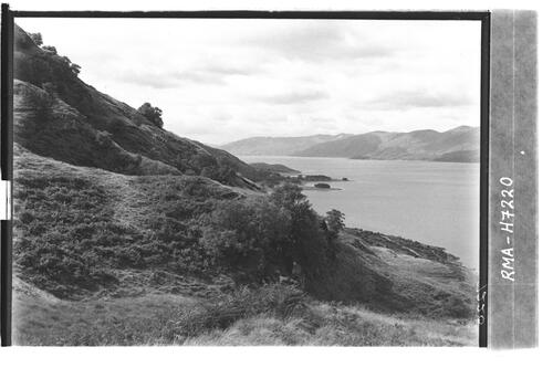 Above Loch Linnhe at Ardsheal.