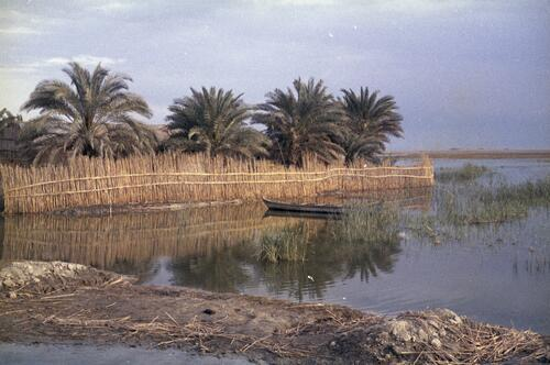 Boat within the marshlands of Southern Iraq