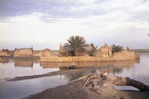 Marsh Arab village