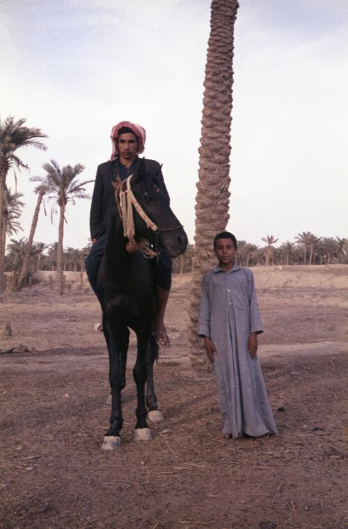 Two unidentified Bedouin young men and a horse