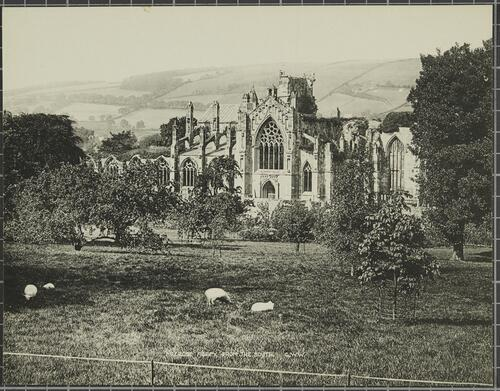 Melrose Abbey, from the South