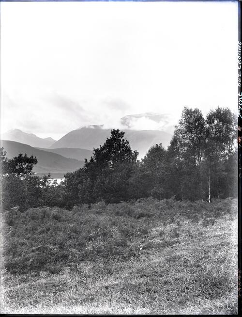 Ben Nevis from [above] Achdalieu.
