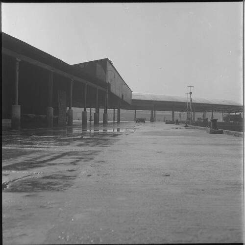 [Outside view of dock's buildings, South Shields fishing docks]