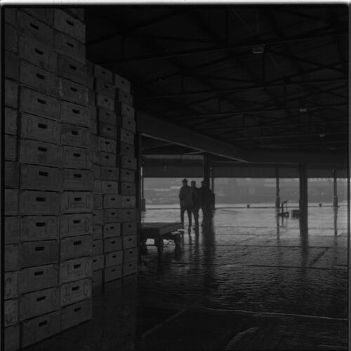 [A pile of boxes for fish inside a building, South Shields fishing docks]