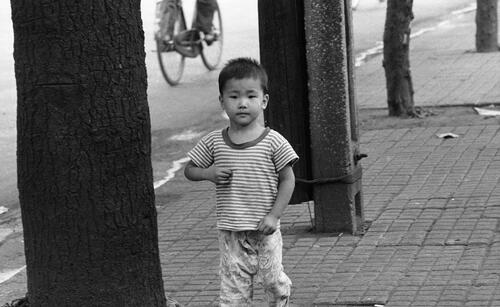 [A young boy in a stripped t-shirt stands in a sidewalk between a tree and a concrete post]