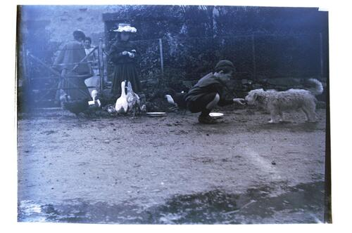 Balallan, Plockton. [Ida and Fred Miller feed the chickens and dog.]